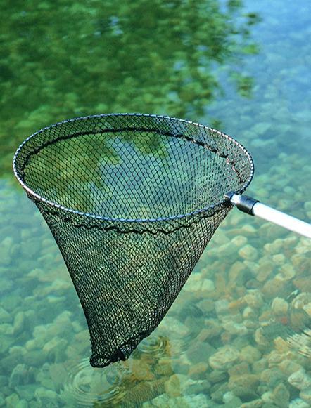 Cat gorie accessoire de bassin de jardin du guide et for Accessoire bassin poisson