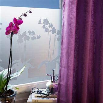 stickers plume. Black Bedroom Furniture Sets. Home Design Ideas