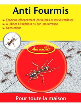 Les fourmis guide d 39 achat for Anti fourmi naturel maison