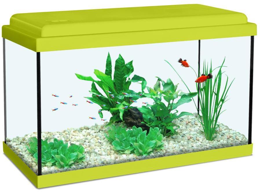 Aquarium guide d 39 achat for Aquarium zolux