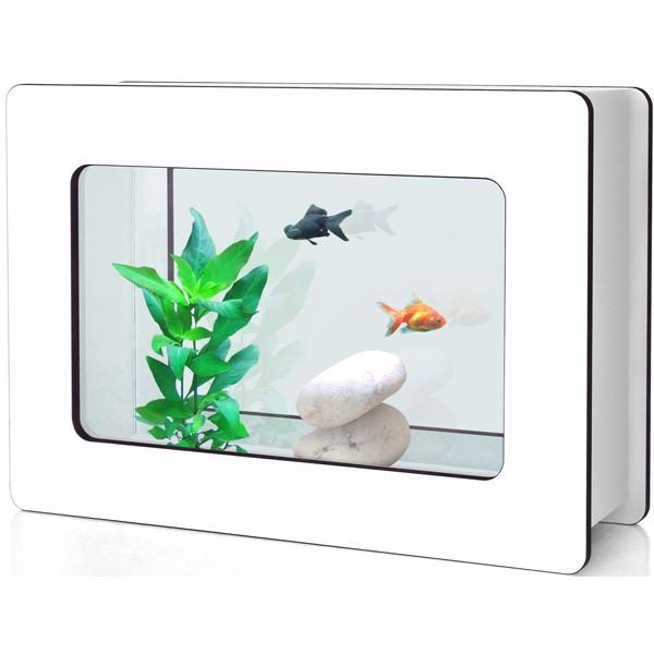 aquarium d guide d achat