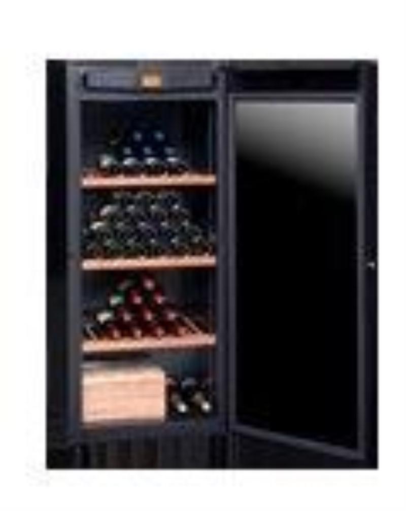 Avintage dvp 180 g for Cave a vin garage froid