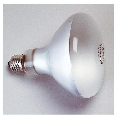 kaiser lampe photoflood 500w kai3125. Black Bedroom Furniture Sets. Home Design Ideas