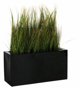 Catgorie Plante Dextrieur Page 1 Du Guide Et Comparateur D 39 Achat