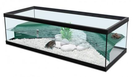 Aquarium guide d 39 achat for Aquarium tortue