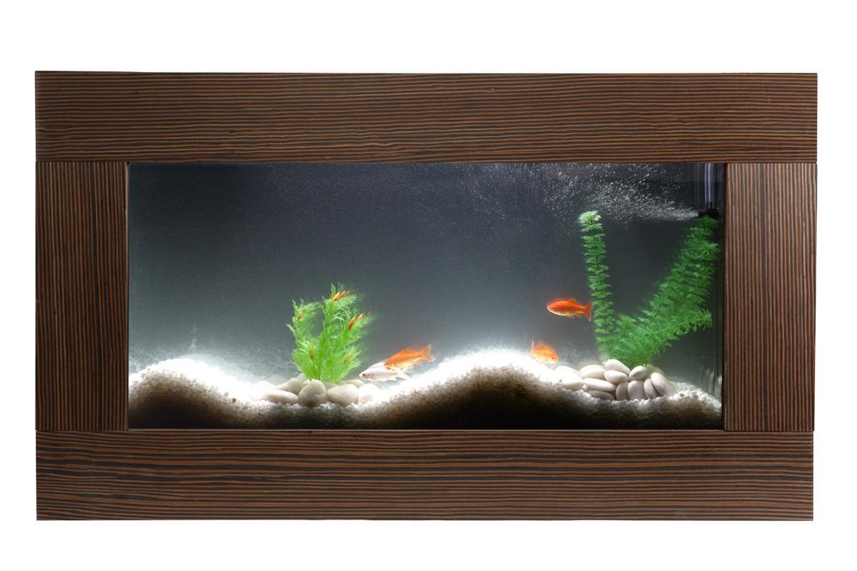 Aquarium guide d 39 achat for Achat aquarium design