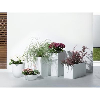 Catgorie caches pot marque beliani page 1 du guide et for Achat de fleurs