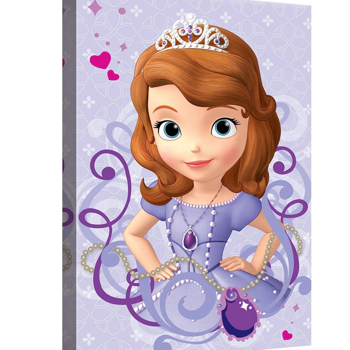 Disney Ctableau Princesse Sofia