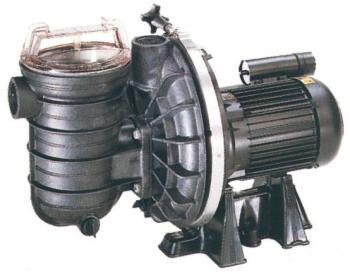 Catgorie filtration de piscine du guide et comparateur d 39 achat for Pompe piscine sta rite