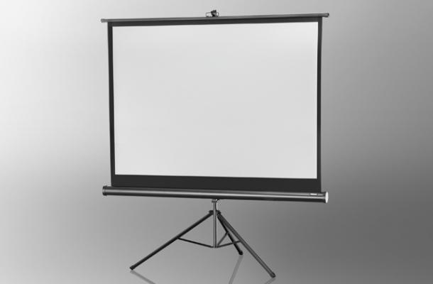 celexon ecran de projection sur pied economy 176 x 132 cm. Black Bedroom Furniture Sets. Home Design Ideas