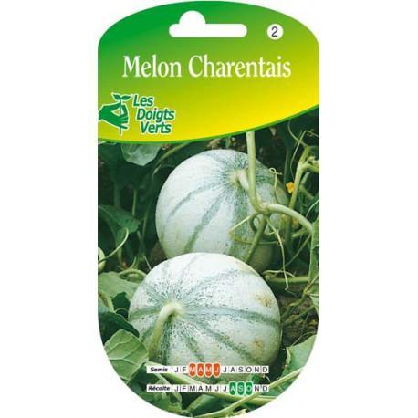 Catgorie semence du guide et comparateur d 39 achat - Culture du melon charentais ...